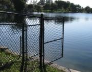 sea fan fence-4